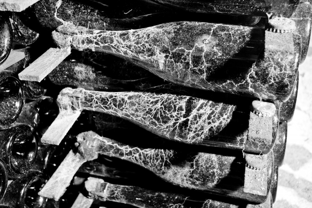 Bottiglie distese su dei listelli di bosco nelle cantine per invecchiare parecchi anni